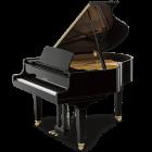 Pianos - Piano de Cauda