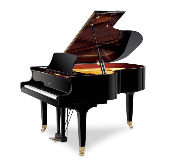 PIANO RITMULLER GP170 CAUDA